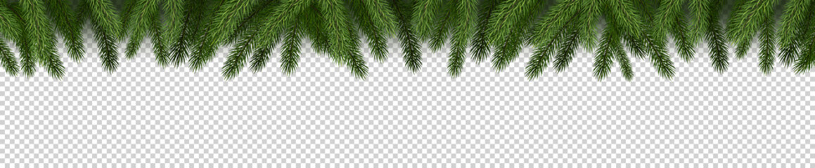 Fir branches on checkered background. Spruce branches. Christmas tree branches. Can be used on any background. Vector illustration