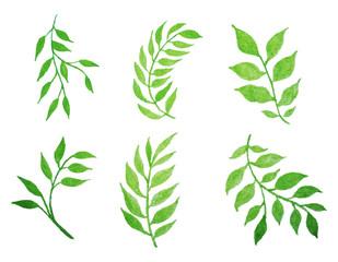 set of vector watercolor leaves.