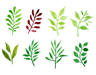 set of vector watercolor leaves.