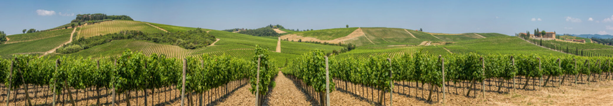 Panoramic view of a winery and vineyards in the rolling hills near San Gimignano, Chianti, Tuscany