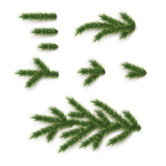 Fir branches and elements set. Vector Christmas tree parts.