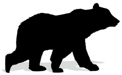 Silhouette of bear.