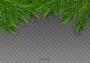 Set of Realistic Detail Christmas tree branches. Christmas and New Year isolated on прозрачном background for your design. Vector illustration EPS10