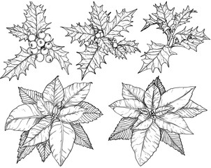 Christmas flowers set sketch. Black and white
