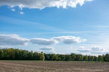 schöner blauer Wolkenhimmel über Feldern und Wiesen. Standort: Deutschland, Nordrhein - Westfalen, Borken
