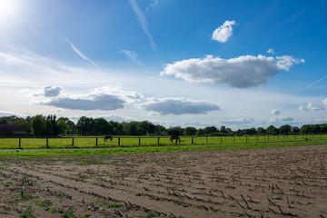 schöner blauer Wolkenhimmel über Felder und Wiesen mit Pferden. Standort: Deutschland, Nordrhein - Westfalen, Borken