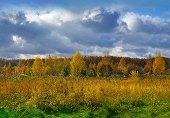 Autumnal nature, scenery