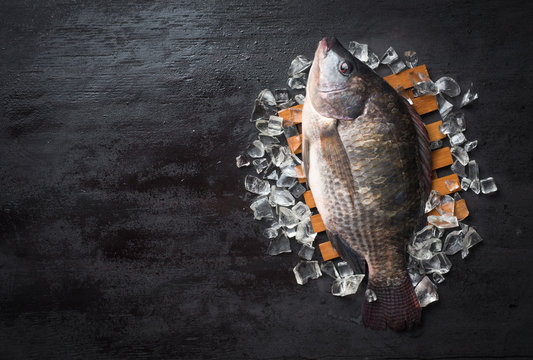 Fresh Tilapia fish on iced,top view