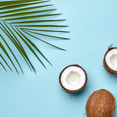 Whole and halves of coconut with a palm leaf on a blue background with a copy of the space for text. An exotic fruit. Flat lay