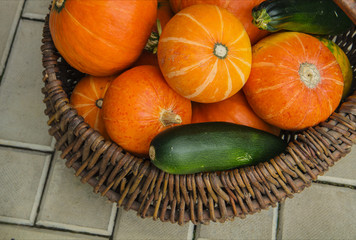 Ripe pumpkin and zucchini in wicker basket on white background. Autumn concept