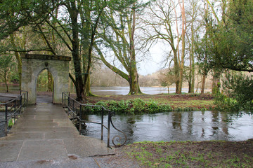 bridge in the river
