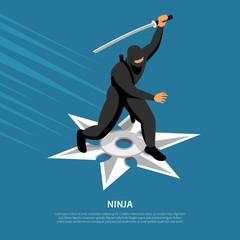 Ninja Warrior Isometric Poster