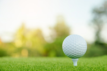 Golf ball with white tee on green grass ready to play at golf course. with copy space