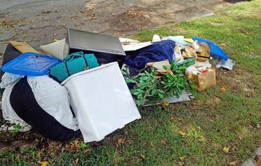 Household rubbish debris on grassy street easement.