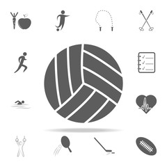 volleyball icon. Sport icons universal set for web and mobile