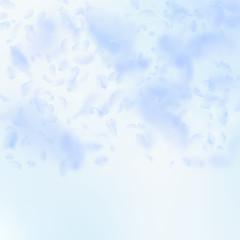 Light blue flower petals falling down. Fancy romantic flowers gradient. Flying petal on blue sky squ
