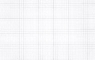 White paper with grid line pattern background. Wall mural