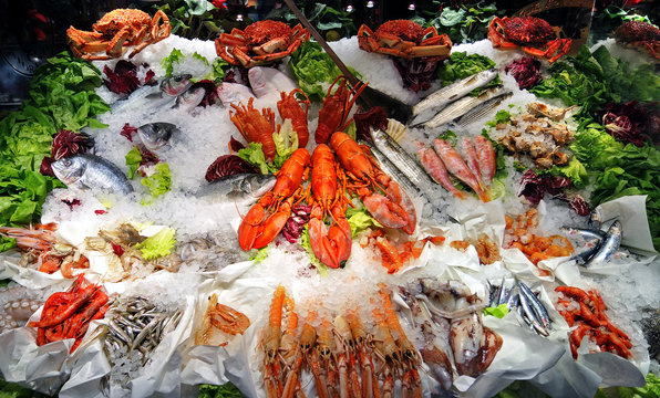 Seafood buffet of fish, lobsters and prawns on ice, displayed in restaurant.