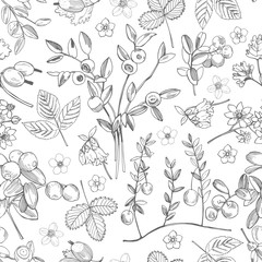 Hand drawn forest berry. Vector seamless pattern .