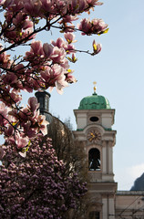 English garden - Salzburg