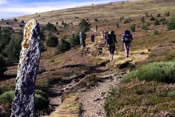 Stelen am Mont Lozère