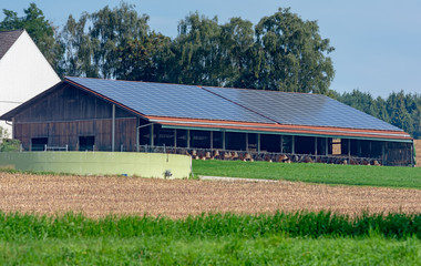 Cowshed with solar cells on the roof