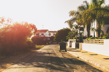 Countryside street with cottages, homes and palm trees at sunset