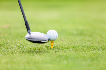 Close-up of golf ball on tee in front of driver on green field