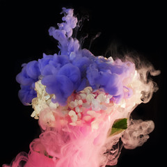 ink in water - pink and purple ink smoke  around a hydrangea flower on a black background