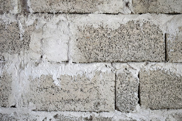 Textured concrete background. Grey texture close up blank for design. Copy space