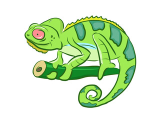 Colorful Chameleon Cartoon Clipart