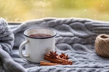 The conception of cozy and warmth. A Cup of hot fragrant tea, soft knitted plaid and spices on the background of a rainy window in the cold season