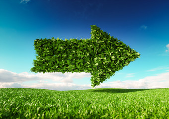 Eco friendly development concept. 3d rendering of single arrow icon on fresh spring meadow with blue sky in background.
