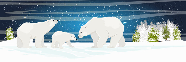 Two adult white polar bear and cub walks through the snow. Mother, father and child. A family. Spruce forest and plains. Starry night in the North. Landscapes of the Arctic.