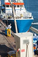 Déchargement d'un bateau de pêche dans le port du Guilvinec (Finistère)