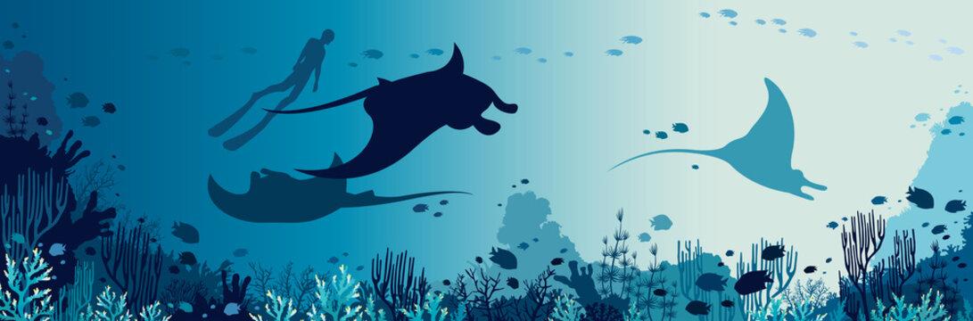 Underwater panorama - mantas, freediver, coral reef, fish, sea