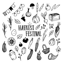Harvest Festival Illustration Pack/autumn,fall,october,vegetable/Doodle Clip Art/Hand Drawn