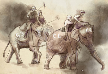 Elephant polo. An hand drawn illustration. Freehand drawing, painting.
