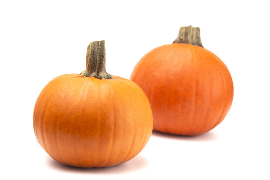 Perfect Pumpkins For Making into a Pie