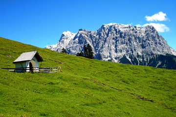 View from a pasture to the Zugspitze