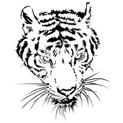 Tiger head silhouette, Vector illustration and design.
