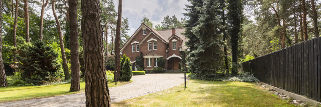 A long paved driveway surrounded by lawn, trees and evergreens leading to a red brick English style house. Panorama.