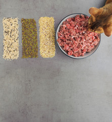 Natural raw ingredients for pet food on grey background. Flat lay.