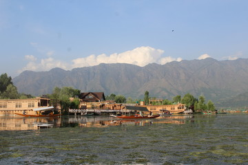 The dal lake in paradise