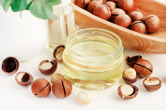 Macadamia nuts and jar of cosmetic holistic oil for skincare. Organic beauty product at home spa.
