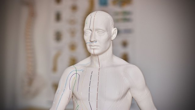 Medical training doll