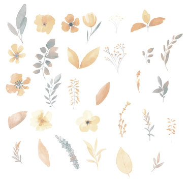 Pastel golden set of watercolor flowers and leaves