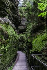 Wanderweg in der Sächsischen Schweiz