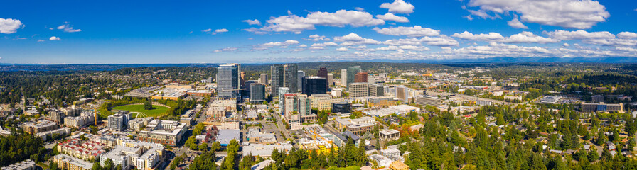 Bellevue Washington aerial drone panorama