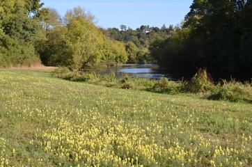 Rivière le Hâvre, Loire-Atlantique, France